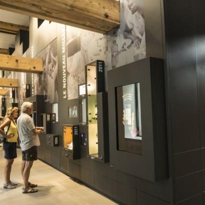 nest, le musée Henri Nestlé