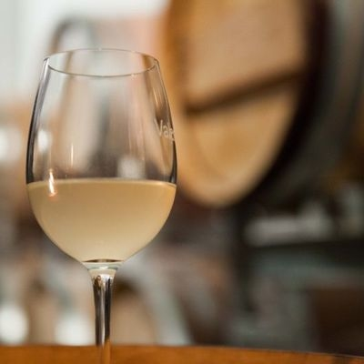 Dégustations du premier vin de l'année avec Neuchâtel - Vins & Terroir