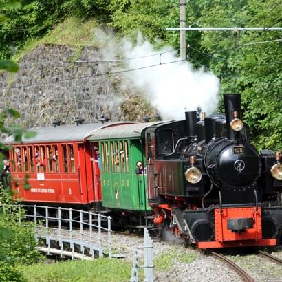 Chemin de fer - musée Blonay-Chamby